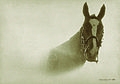 El caballo (6815702834).jpg