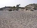 Elaphonisi - panoramio (16).jpg