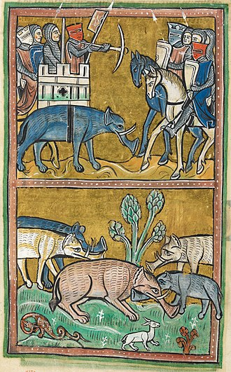 Rochester Bestiary - Detail of a miniature of elephants, who were thought to have been ridden into battle in India carrying castles on their backs; folio 11v.