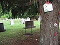 Elmira, New York (Woodlawn Cemetery) (1882725634).jpg