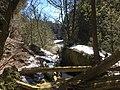 Elora Gorge 20200321 183450966 iOS.jpg