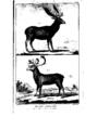 Encyclopedie volume 5-030.png
