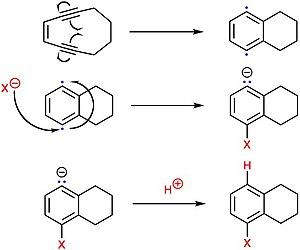 Hexosaminidase