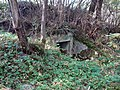 Enter To Shelter In Forest - Old Military Area - Part Of Artillery Unit BB 27 - panoramio.jpg