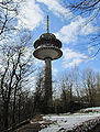Eppenhain-atzelberg-2010-007.jpg