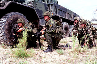 Motorized infantry military service branch which operates infantry transported by trucks or unprotected motor vehicles