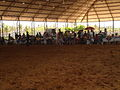 Expo inter do Arabe 130913 REFON -12.JPG