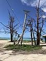 Extensive typhoon destruction (31154809227).jpg