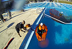 F-35 water survival instructor keeps training afloat 141031-F-SI788-137.jpg