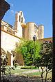 F10 11.Abbaye de Valmagne.0200.JPG