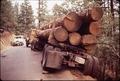 FLATBED TRUCK WHICH RAN OFF LOGGING ROAD - NARA - 542780.tif