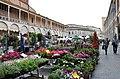 Faenza palazzo comunale.jpg
