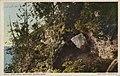 Fairy Arch (NBY 3704).jpg