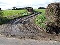 Farm Track, Hapton - geograph.org.uk - 349819.jpg