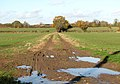 Farm track to East Carleton - geograph.org.uk - 1585431.jpg