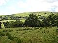 Farmland near Gerddi-gleison - geograph.org.uk - 520631.jpg