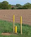 Farmland next to Bosworth Road - geograph.org.uk - 1332302.jpg