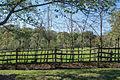 Fence at fruit garden - Mount Vernon.jpg