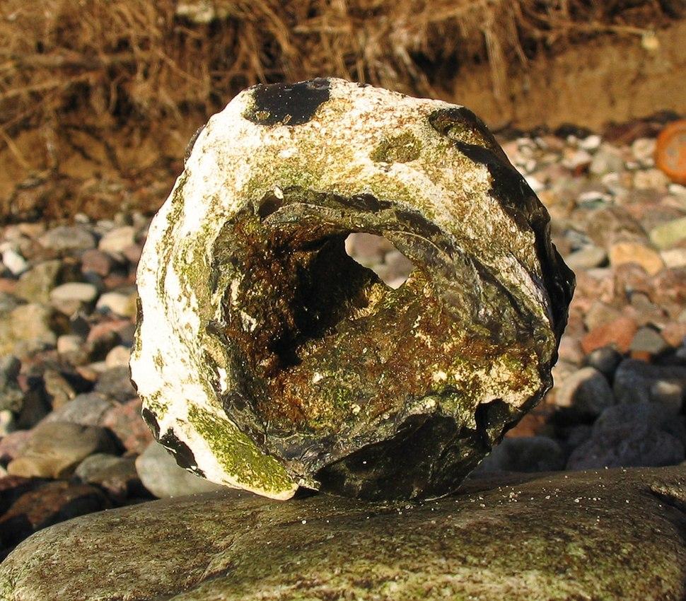 Feuerstein mit Loch-Huehnergott