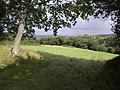 Field near Cranbrook - geograph.org.uk - 1478432.jpg