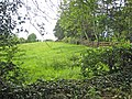 Field near Plaster - geograph.org.uk - 443779.jpg