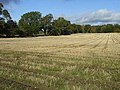Field of stubble near Walwick - geograph.org.uk - 1018424.jpg
