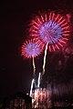 Fireworks - July 4, 2010 (4773140647).jpg