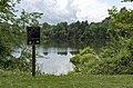 Fishing Regulations Sign Turtle Pond 1.jpg