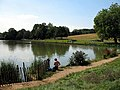 Fishing on Highgate Ponds - geograph.org.uk - 559397.jpg