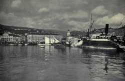 Boats in port, city is visible in the background