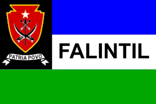 combined military forces of East Timor