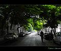 Flickr - Bakar 88 - S h e l t e r i n g . . ..jpg