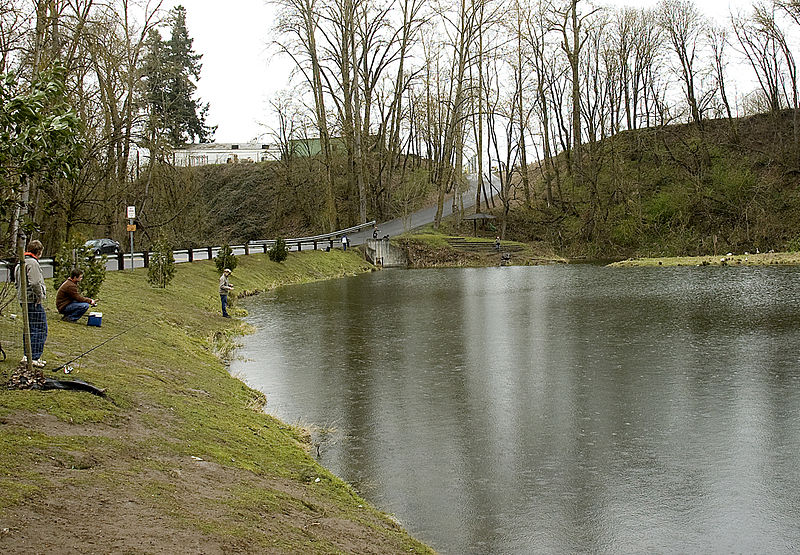 File Flickr Oregon Department Of Fish Wildlife Canby Pond 01 Swart Wikimedia