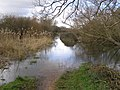 Flooded Test Way footpath to Ruddy Mead - geograph.org.uk - 344601.jpg