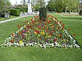 Floral display, Chase Green, Enfield - geograph.org.uk - 1263057.jpg