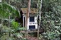 Floresta da Tijuca 31.jpg