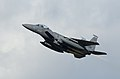 Fly like an eagle 150224-F-ER377-307.jpg