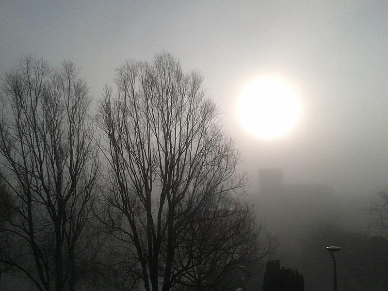 File:Foggy Morning.jpg