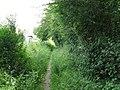 Footpath behind houses in Five Oaks - geograph.org.uk - 1354339.jpg