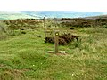 Footpath down to Farndale - geograph.org.uk - 894681.jpg