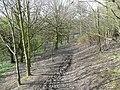 Footpath in Oak Hill Bank, Clifton - geograph.org.uk - 757597.jpg