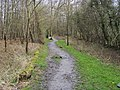 Footpath into Penn Wood - geograph.org.uk - 769718.jpg
