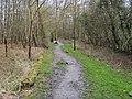 Footpath into Penn Wood - geograph.org.uk - 769718.jpg