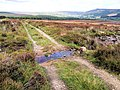 Ford near Long Band Flat - geograph.org.uk - 513539.jpg