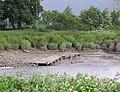 Former ferry landing, Howdendyke - geograph.org.uk - 878225.jpg