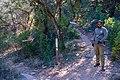 Fossil Springs Trail No. 18 (33182528571).jpg