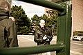 Framed photographer (5044442661).jpg