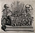 Frederick Ruysch, Tableau of injected vessel Wellcome V0008928.jpg