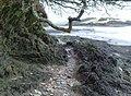 Frogmore Creek - geograph.org.uk - 305063.jpg