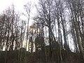 G. Khimki, Moskovskaya oblast', Russia - panoramio (3).jpg